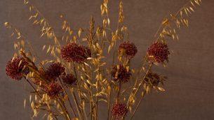 GJEonearth-europe-flowers