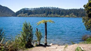 GJEonearth-oceania-Lake-Waiotapu